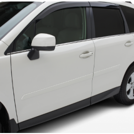 Forester Body Side Molding (Color Matching)